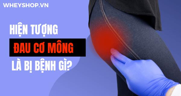 Hiện tượng đau cơ mông từ nhẹ đến nặng ở mông làm giảm sức mạnh của đôi chân và ảnh hưởng đến chất lượng cuộc sống của người bệnh. Nguyên nhân của cơn đau...