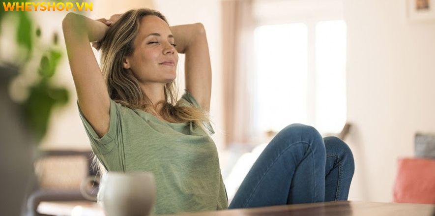 Xoạc dọc Yoga hay xoạc chân là một trong những tư thế được xếp vào nhóm tư thế khó trong Yoga mà đến những người tập Yoga lâu năm cũng có thể gặp khó khăn...