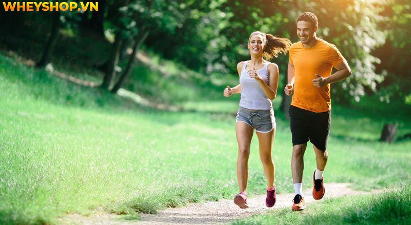 Đi bộ được coi là hình thức tập thể dục đơn giản nhưng mang lại nhiều lợi ích, nhưng bạn có biết tốc độ đi bộ trung bình của một người nên là bao nhiêu thì...