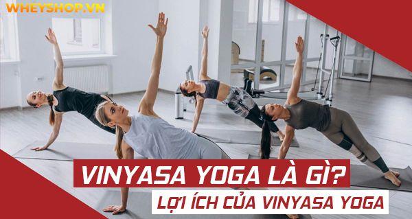 vinyasa yoga la gi dac diem va loi ich 10