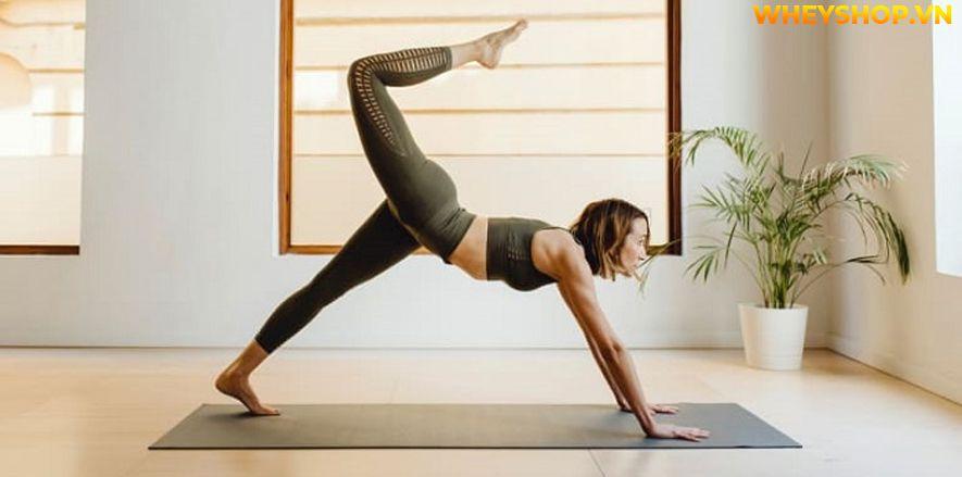 Nếu bạn đang băn khoăn tập Yoga hàng ngày có tốt không thì hãy cùng WheyShop tham khảo chi tiết bài viết ngay sau đây...