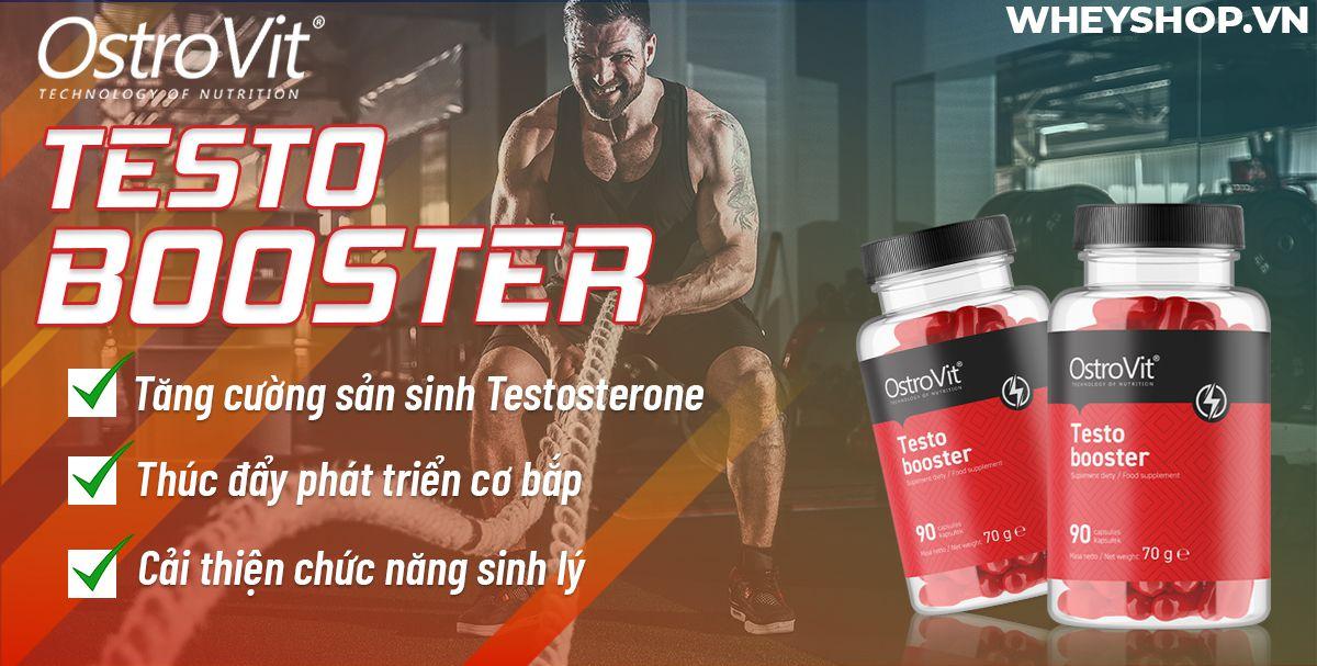 Ostrovit Testo Booster hỗ trợ sản sinh testosterone tự nhiên, cải thiện sinh lý, tăng cơ giảm mỡ. Sản phẩm nhập khẩu, cam kết giá rẻ tốt nhất Hà Nội TpHCM