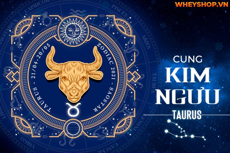 Cung Kim Ngưu (tên tiếng Anh là Taurus) là một cung hoàng đạo thường được nhắc đến với một số đặc điểm tính cách như điềm tĩnh và chăm chỉ, sức khỏe tốt. Kim...